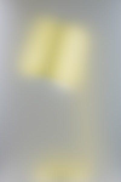 Pilkington Obscure glass - Opalopal