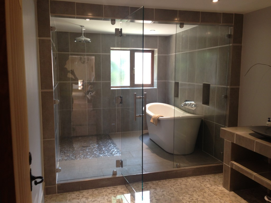Shower Door Enclusre